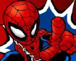 spiderlad